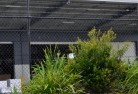 Cooloola Wire fencing 20